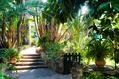 Il bellissimo giardino  botanico dell'Hotel.